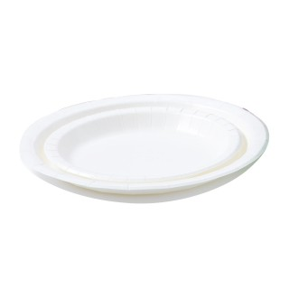 ECO-FRIENDLY PAPER PLATE